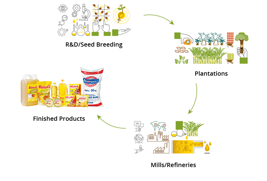 Integrated Agribusiness Model